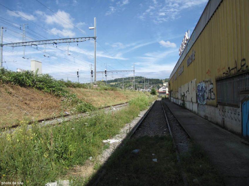 Duca  Site 2  I